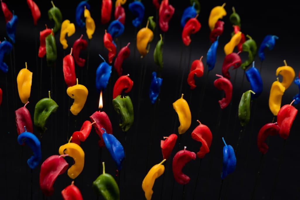 kunst - Ingrid Slaa - beeld - oren - wax